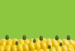 #flatlay #banner #organic #fresh_produce #healthy_food