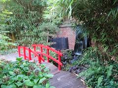 Sains-du-Nord le jardin japonais (3)
