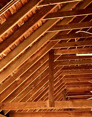 Rafters Lines