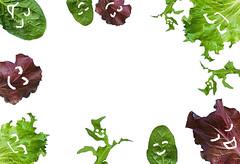 _#flatlay #banner #healthy_living #healthy_friendship #salad #life_goal