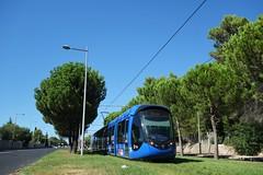 Alstom Citadis 402 n°2091  -  Montpellier, TaM