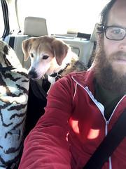 backseat sneak 2