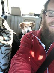 backseat sneak 1