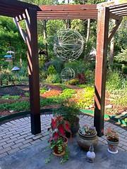 Random photos from my gardens