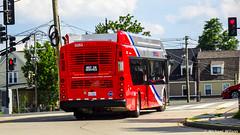 WMATA Metrobus 2020 New Flyer Xcelsior XN40 #3283