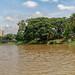 Boat trip Mae Ping river cruises - Chiang mai