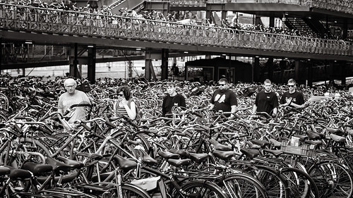 lost between the bikes