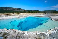 Sapphire Geyser, Yellowstone