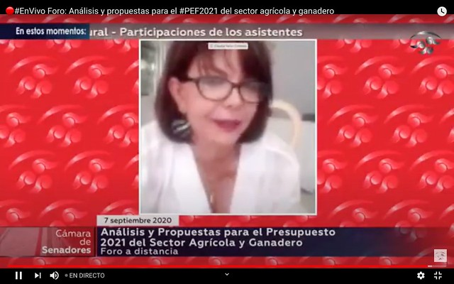 07/09/2020 Análisis Y Propuestas Para El Presupuesto 2021 Del Sector Agrícola Y Ganadero