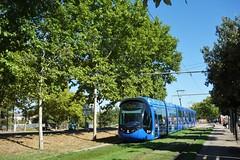 Alstom Citadis 402 n°2092  -  Montpellier, TaM