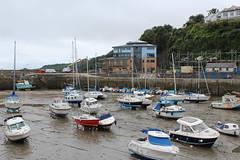 Saundersfoot Harbour.
