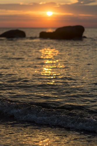 essence of summer (Explore)