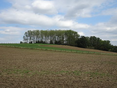 Merris Pallynck Straete - Photo of Calonne-sur-la-Lys