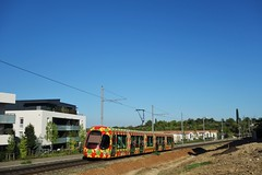 Alstom Citadis 302 n°2051  -  Montpellier, TaM