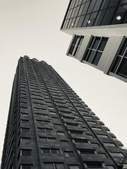 Rotterdam/NL