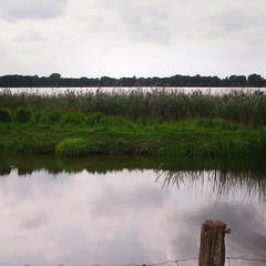 Pond farming at the lake   September 11, 2020   Bornhöved - Schleswig-Holstein - Germany