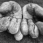Hands by Paul Seymour