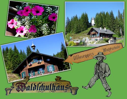 Peter Roseggers Waldschulhaus / Peter Rosegger's Forest school house