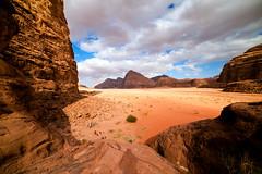 Wadi Rum #8