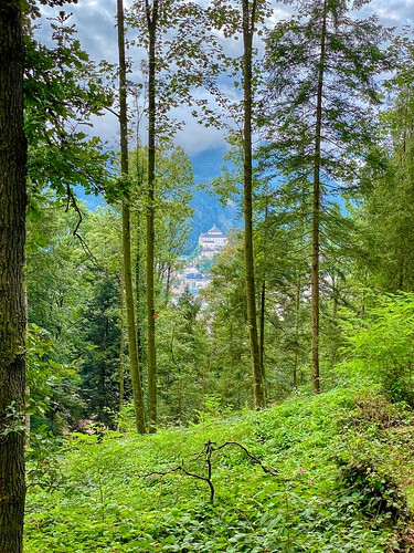 View of Kufstein Fortress through the forest on Thierberg mountain in Tyrol, Austria
