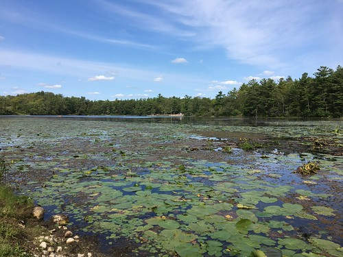 Pinehurst Lake 2