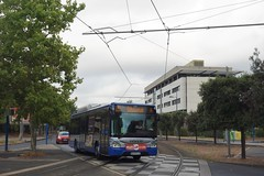 Iveco Bus Urbanway 12 n°215  -  Montepllier, TaM
