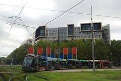 Alstom Citadis 402 n°2083  -  Montpellier, TaM