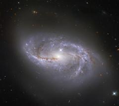 Barred Spiral NGC 2608