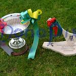SHC Final 2020 Castleblayney v Truagh