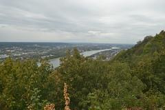Blick vom Drachenfels Richtung Bonn (137FJAKA_4434)