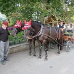 Herbstausfahrt Riethüsli 2020