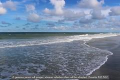 Jacksonville Beaches FL