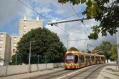 Alstom Citadis 302 n°2053  -  Montpellier, TaM