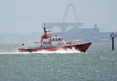 Pilot boat, outbound, Port of Oakland  2  DSC_0569