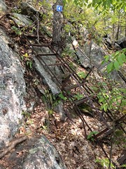 Vintage Staircase on Cliff Top Trail - Bon Echo