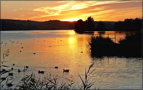 Sonnenaufgang über dem Süßen See bei Aseleben