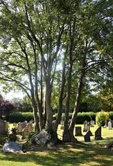 Sysonby churchyard