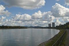 Blick auf den Rhein in Richtung Siebengebirge von Bonn aus (137FJAKA_4460)