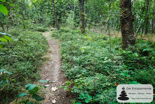 Waldpfad kurz vor dem Schmoritz