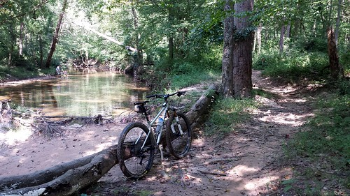 2020 Bike 180: Day 108 - Creek Play