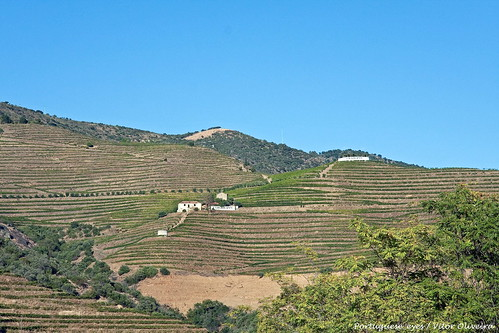 Vale do Douro - Portugal 🇵🇹