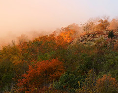 Soft dawn at the Delaware Water Gap