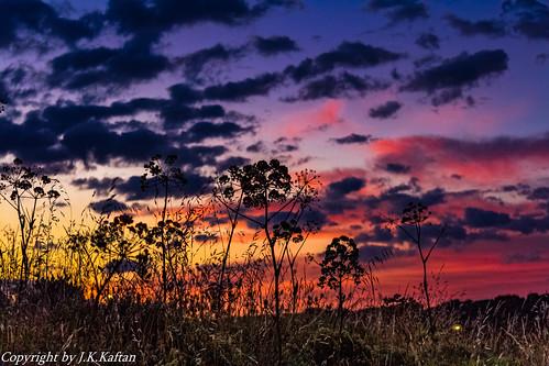 And it dawns in the countryside ..., Y amanece en el campo...