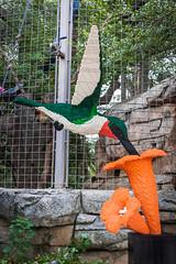 Zoo Pics-9