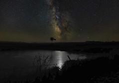 Star Pond.