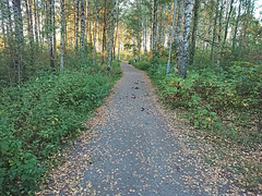 Gymsalen-Sentrum, Hovskogen, Hov, Askim, Indre Østfold, Viken, Norway
