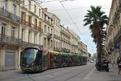 Alstom Citadis 402 n°2078  -  Montpellier, TaM