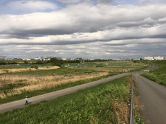 Arakawa River in Shingashi, Itabashi-ku