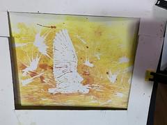white egret start