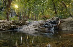 Sunburst On Croydon Creek